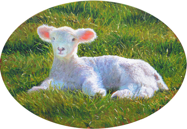 Lambs of Ross No.3
